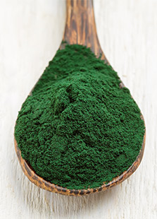 Piping Rock Spirulina Powder