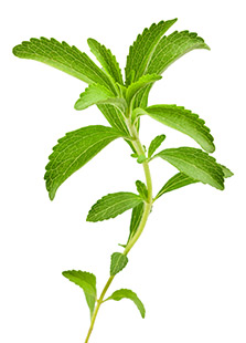 Piping Rock Sweeter Stevia with Inulin